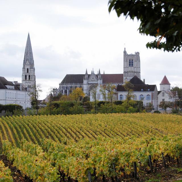 Clos de La Chaînette Cathédrale Abbaye