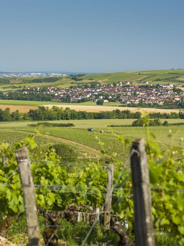 st-bris-le-vineux-05062015-9015.jpg