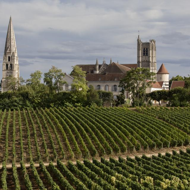 Auxerre 6 ©bivb