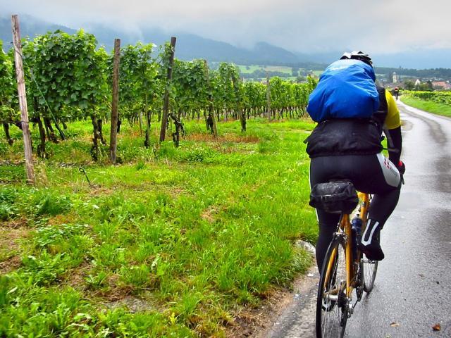 Vélo Vignoble Pluie
